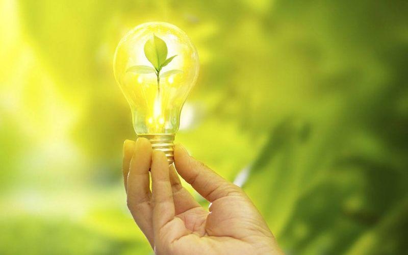 Design Sem Nome (29) - Contabilidade em Guarulhos - SP | Aliança Contabilidade - O que é um negócio sustentável?